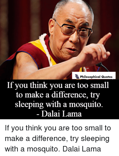 Philosophical Quotes If You Think You Are Too Small To Make A