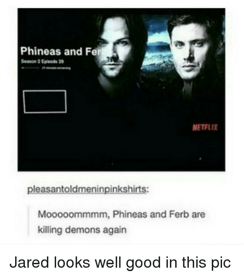 Memes, Netflix, and Phineas and Ferb: Phineas and Fer  Season 2 20  NETFLIX  pleasantoldmeninpinkshirts:  Mooooommmm, Phineas and Ferb are  killing demons again Jared looks well good in this pic