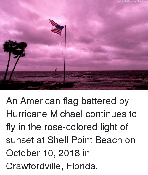 Memes, American, and American Flag: Photo by Mark Wallheiser/Getty Images An American flag battered by Hurricane Michael continues to fly in the rose-colored light of sunset at Shell Point Beach on October 10, 2018 in Crawfordville, Florida.