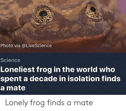 Science, World, and Who: Photo via @LiveScience  Science  Loneliest frog in the world who  spent a decade in isolation finds  a mate Lonely frog finds a mate