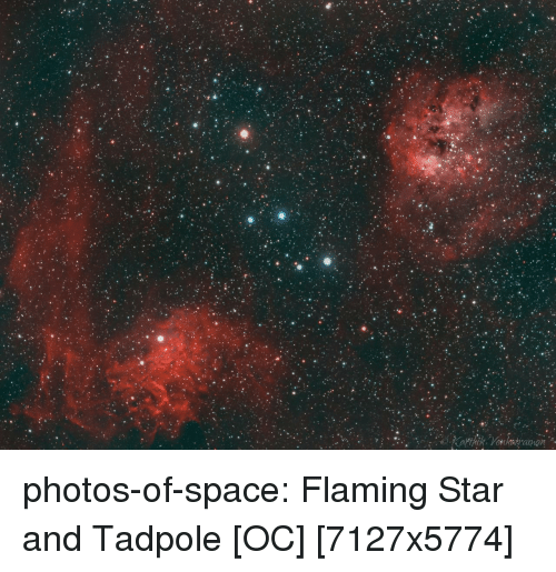 Tumblr, Blog, and Space: photos-of-space:  Flaming Star and Tadpole [OC] [7127x5774]