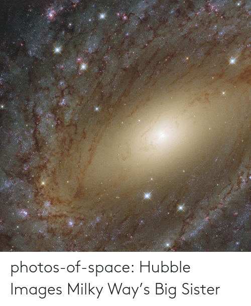 Tumblr, Blog, and Images: photos-of-space:  Hubble Images Milky Way's Big Sister