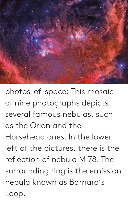 Tumblr, Blog, and Pictures: photos-of-space:  This mosaic of nine photographs depicts several famous nebulas, such as the Orion and the Horsehead ones. In the lower left of the pictures, there is the reflection of nebula M 78. The surrounding ring is the emission nebula known as Barnard's Loop.