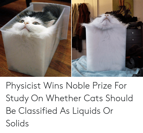Cats, For, and Study: Physicist Wins Noble Prize For Study On Whether Cats Should Be Classified As Liquids Or Solids