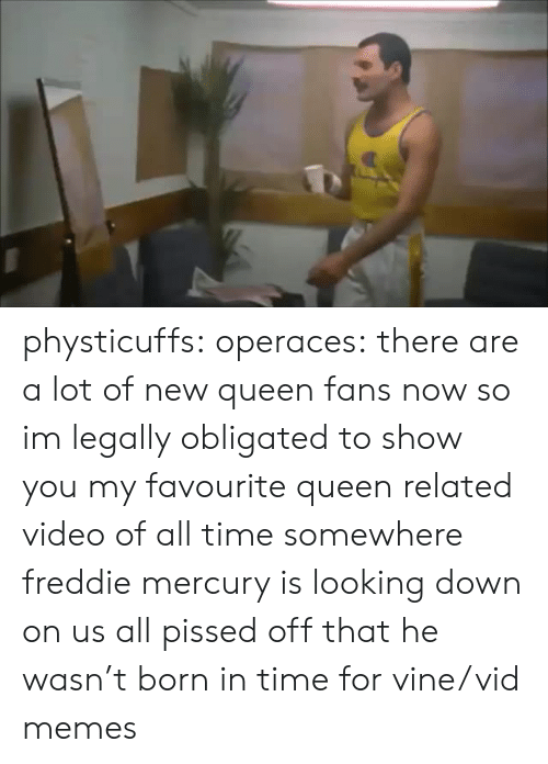 Memes, Tumblr, and Vine: physticuffs: operaces: there are a lot of new queen fans now so im legally obligated to show you my favourite queen related video of all time somewhere freddie mercury is looking down on us all pissed off that he wasn't born in time for vine/vid memes