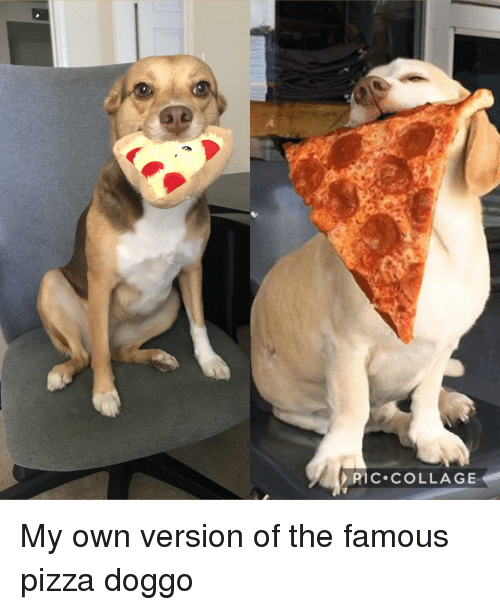 Pizza, Collage, and Doggo: PIC COLLAGE