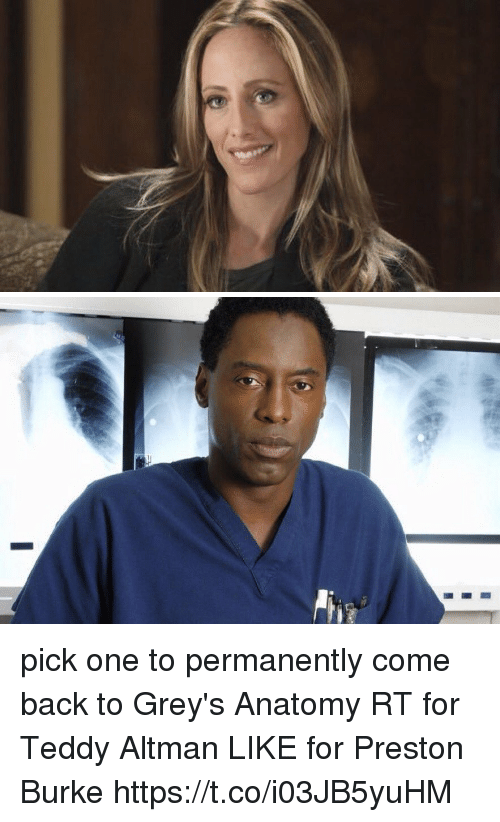 Pick One to Permanently Come Back to Grey\'s Anatomy RT for Teddy ...