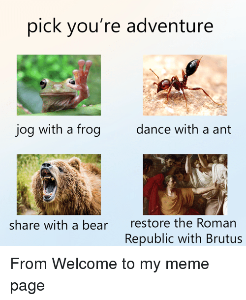 Meme, Bear, and Roman: pick you're adventure  jog with a frog  dance with a ant  restore the Roman  Republic with Brutus  share with a bear From Welcome to my meme page