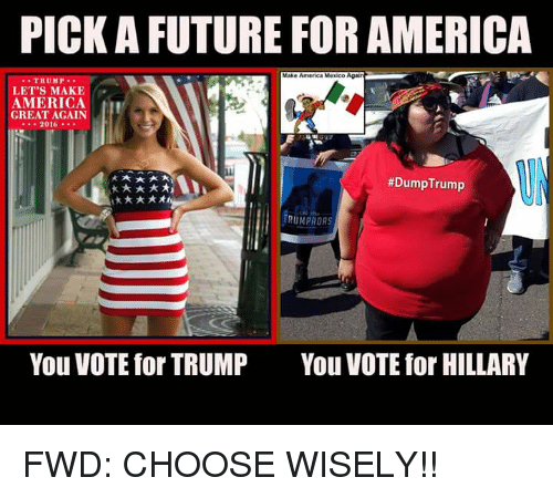 picka future for america make america mexico trump lets make 2751896 ✅ 25 best memes about donald trump thinks your waifu is shit,Dump Trump Meme