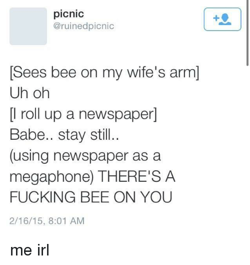 Fucking, Irl, and Me IRL: picnic  @ruinedpicnic  Sees bee on my wife's arm]  Uh oh  [l roll up a newspaper]  Babe.. stay still..  (using newspaper as a  megaphone) THERE'S A  FUCKING BEE ON YOU  2/16/15, 8:01 AM me irl