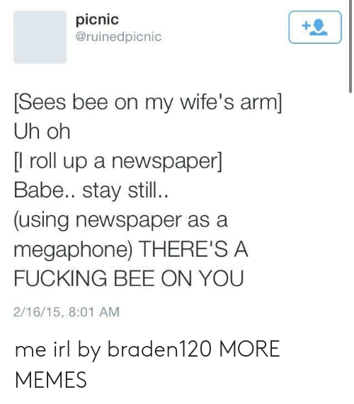 Dank, Fucking, and Memes: picnic  @ruinedpicnic  Sees bee on my wife's arm]  Uh oh  [l roll up a newspaper]  Babe.. stay still..  (using newspaper as a  megaphone) THERE'S A  FUCKING BEE ON YOU  2/16/15, 8:01 AM me irl by braden120 MORE MEMES