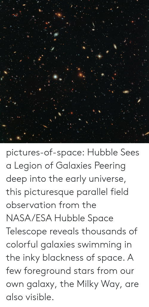 Nasa, Tumblr, and Blog: pictures-of-space:    Hubble Sees a Legion of Galaxies Peering deep into the early universe, this picturesque parallel field observation from the NASA/ESA Hubble Space Telescope reveals thousands of colorful galaxies swimming in the inky blackness of space. A few foreground stars from our own galaxy, the Milky Way, are also visible.