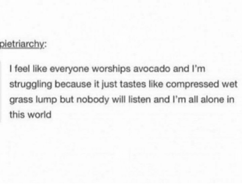 Being Alone, Memes, and Avocado: pietriarchy  I feel like everyone worships avocado and I'm  struggling because it just tastes like compressed wet  grass lump but nobody will listen and I'm all alone in  this world