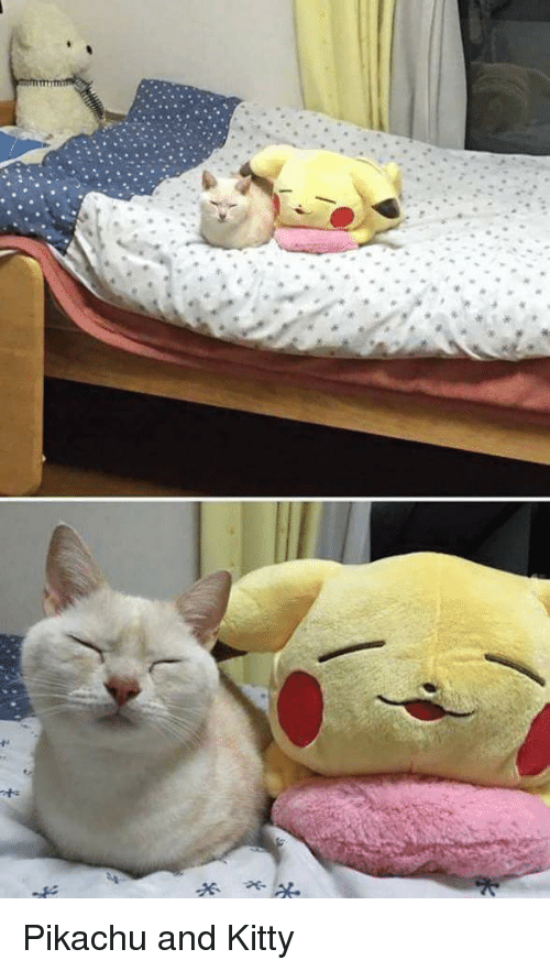 pikachu and kitty pikachu meme on