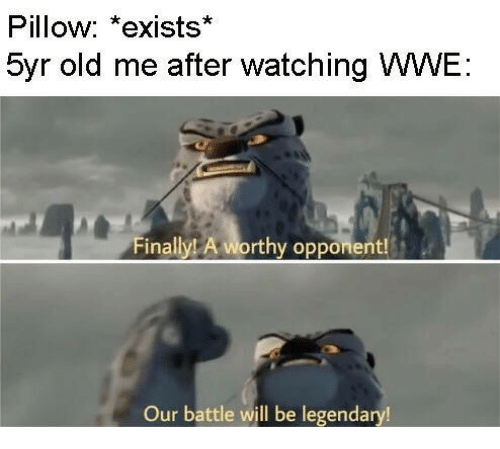 World Wrestling Entertainment, Old, and Legendary: Pillow: *exists*  5yr old me after watching WWE  Finally A worthy opponent!  Our battle will be legendary!