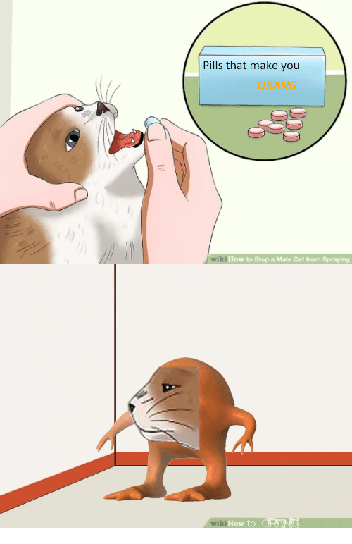 pills that make you orang iki how to stop a 28372624 pills that make you orang iki how to stop a male cat from spraying