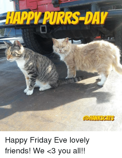 Memes, 🤖, and Eve: PILPURRS DAY Happy Friday Eve lovely friends!  We <3 you all!!
