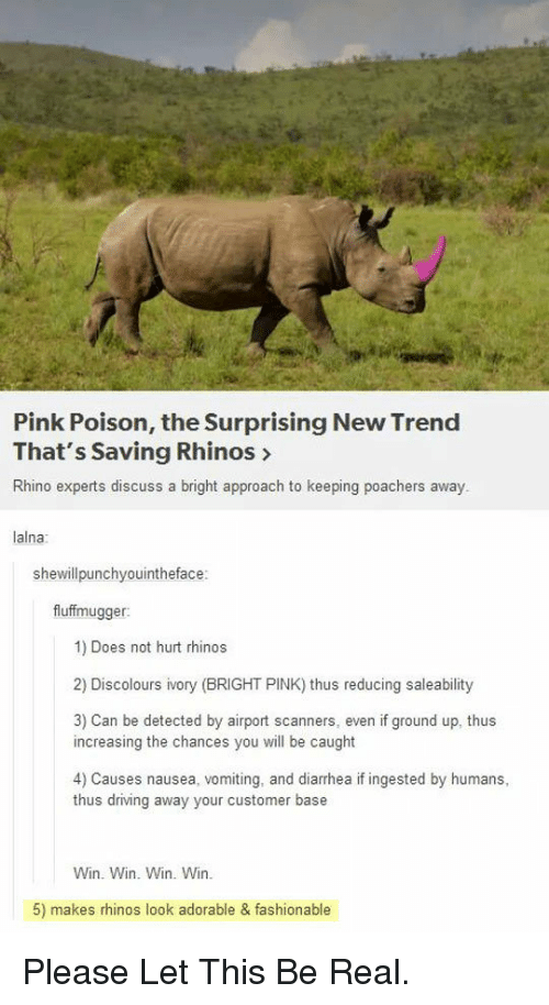 Pink Poison the Surprising New Trend That's Saving Rhinos