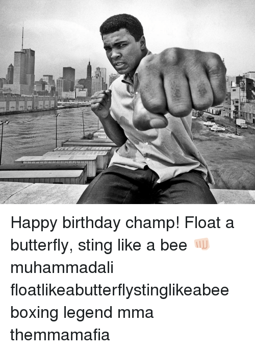 pioneer happy birthday champ float a butterfly sting like a 12335466 ✅ 25 best memes about bees bees memes