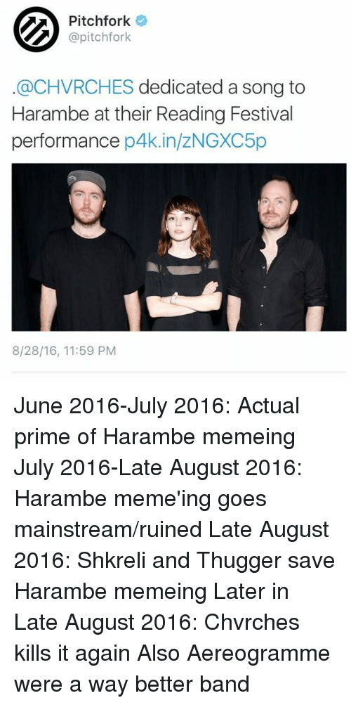 pitchfork pitchfork chvrches dedicated a song to harambe at their 4493793 ✅ 25 best memes about martinshkreli martinshkreli memes