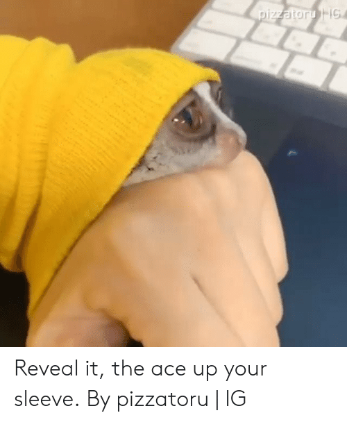 Dank, 🤖, and Ace: pizzatoru IG Reveal it, the ace up your sleeve.  By pizzatoru   IG