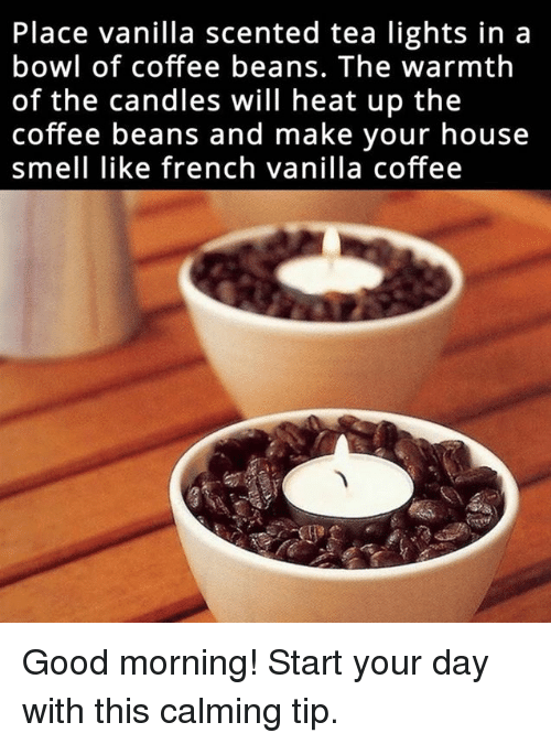 25 Best Memes About The Coffee Bean The Coffee Bean Memes