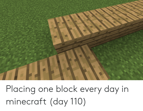 Minecraft, One, and Day: Placing one block every day in minecraft (day 110)