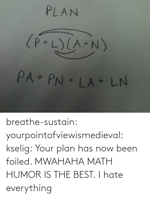 Target, Tumblr, and Best: PLAN  (P+L)(A+N)  PA+ PN + LA + LN breathe-sustain:  yourpointofviewismedieval:  kselig:  Your plan has now been foiled. MWAHAHA  MATH HUMOR IS THE BEST.  I hate everything