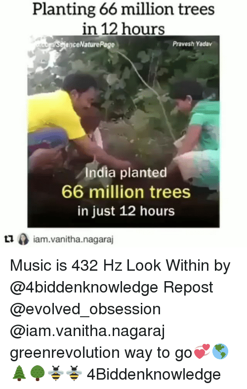 Memes, Music, and India: Planting 66 million trees  in 12 hours  enceNaturePage  Pravesh Yadav  India planted  66 million trees  in just 12 hours  ロ0 iam.vanitha.nagaraj  Lliam.vanitha.nagaraj Music is 432 Hz Look Within by @4biddenknowledge Repost @evolved_obsession @iam.vanitha.nagaraj ・・・ greenrevolution way to go💞🌎🌲🌳🐝🐝 4Biddenknowledge