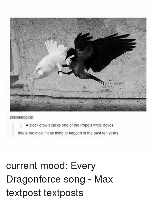 DragonForce, Memes, and Mood: plasmalogical  A black crow attacks one of the Pope's white doves.  this is the most metal thing to happen in the past ten years current mood: Every Dragonforce song - Max textpost textposts