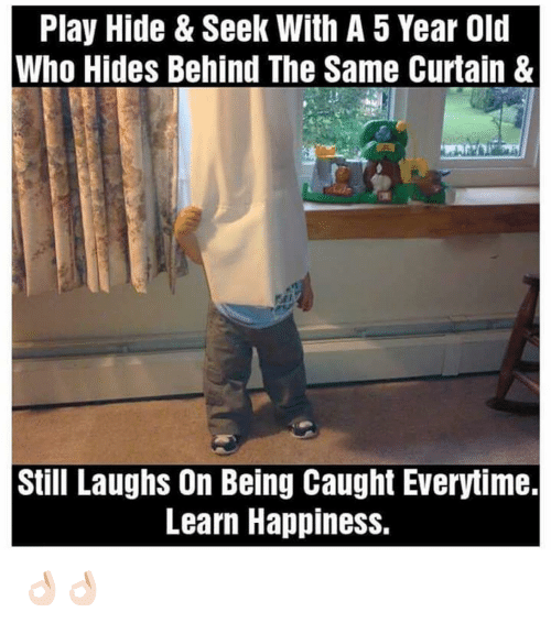 Curtains, Dekh Bhai, and International: Play Hide & Seek With A 5 Year Old  Who Hides Behind The Same Curtain &  Still Laughs On Being Caught Everytime.  Learn Happiness. 👌🏻👌🏻