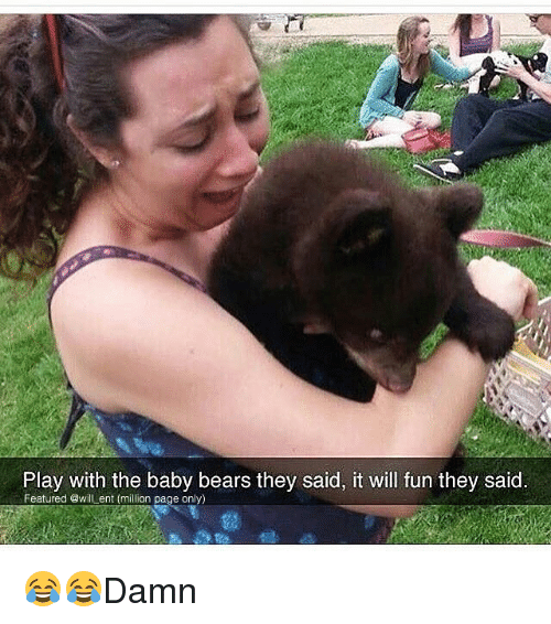 Memes, Bears, and Baby: Play with the baby bears they said, it will fun they said  Featured @will ent (million page only) 😂😂Damn