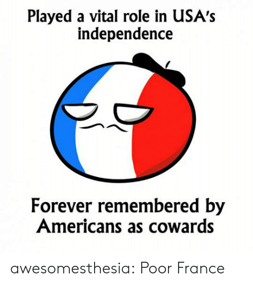 Tumblr, Blog, and Forever: Played a vital role in USA's  independence  Forever remembered by  Americans as cowards awesomesthesia:  Poor France