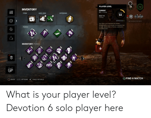 PLAYER LEVEL 54 12 6 INVENTORY CURRENT 813 4 200xp LEVEL ITEM ADD