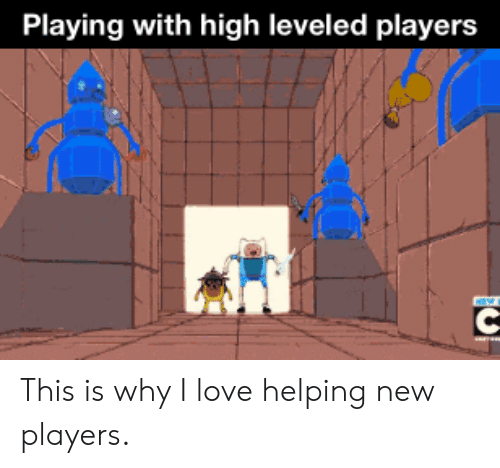 Love, Why, and New: Playing with high leveled players This is why I love helping new players.