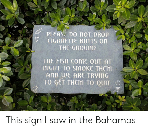 Saw, Bahamas, and Fish: PLEAS DO MOT DROP  CIGARETTE BUTTS On  THE GROUND  THE FISH COME OUT AT  NIGHT TO SMOKE THEM  AND WE ARE TRVING  TO GET THEM TO QUIT This sign I saw in the Bahamas