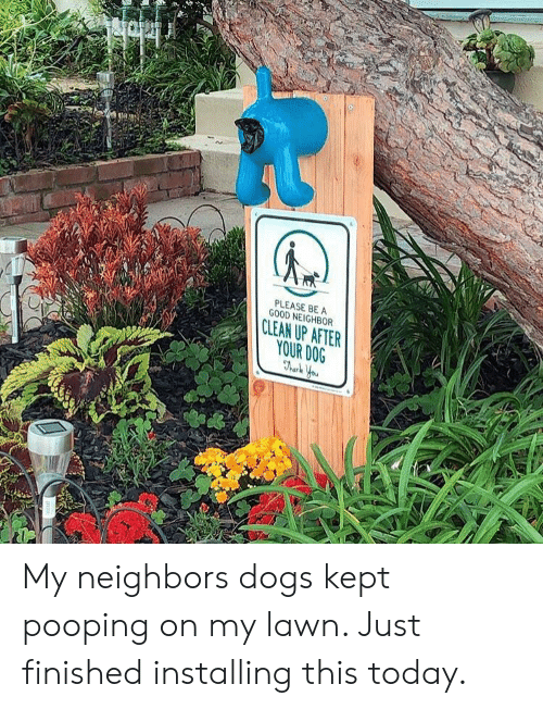 Dogs, Good, and Neighbors: PLEASE BEA  GOOD NEIGHBOR  CLEAN UP AFTER  YOUR DOG My neighbors dogs kept pooping on my lawn. Just finished installing this today.