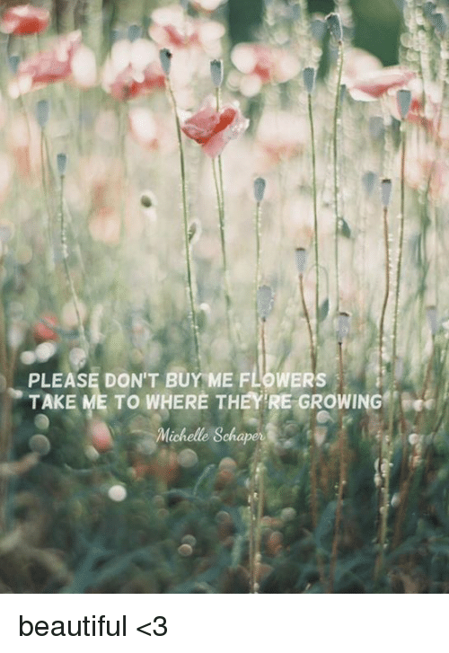 Please Don T Me Flowers Take To