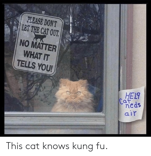 Don/'t let the cats out no matterr what they tell you