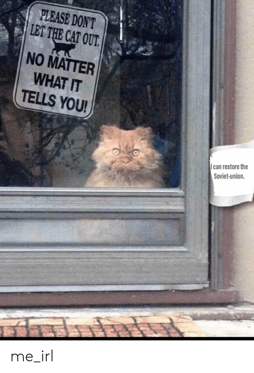 Soviet, Soviet Union, and Irl: PLEASE DON'T  LET THE CAT OUT.  NO MATTER  WHAT IT  TELLS YOU!  can restore the  Soviet-union. me_irl