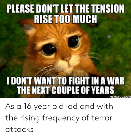 Too Much, Old, and Fight: PLEASE DON'T LET THE TENSION  RISE TOO MUCH  I DON'T WANT TO FIGHT IN A WAR  THE NEXT COUPLE OF YEARS  MEMEFULCOM As a 16 year old lad and with the rising frequency of terror attacks