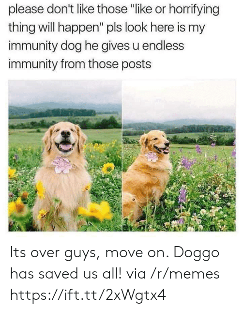 "Memes, Doggo, and Dog: please don't like those ""like or horrifying  thing will happen"" pls look here is my  immunity dog he gives u endless  immunity from those posts Its over guys, move on. Doggo has saved us all! via /r/memes https://ift.tt/2xWgtx4"