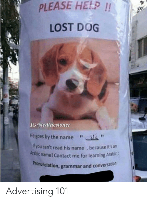 PLEASE HE!P!! LOST DOG IG@tedthestoner He Goes by the Name F