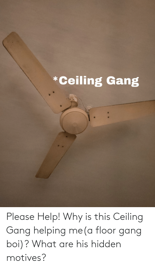 Gang, Help, and Hidden: Please Help! Why is this Ceiling Gang helping me(a floor gang boi)? What are his hidden motives?