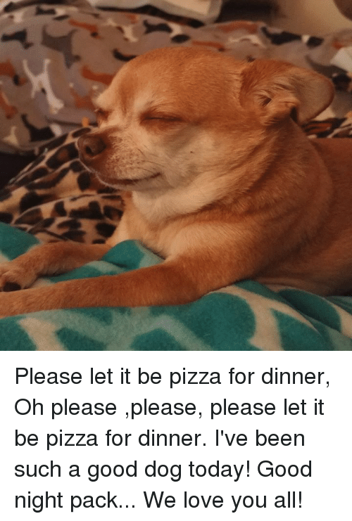 Love, Memes, and Pizza: Please let it be pizza for dinner, Oh please ,please, please let it be pizza for dinner. I've been such a good dog today!  Good night pack... We love you all!