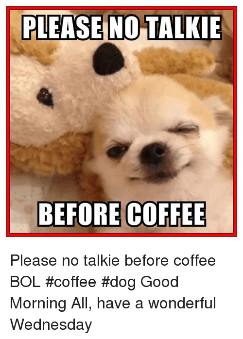 Memes, Good Morning, and Coffee: PLEASE NO TALKIE  BEFORE COFFEE Please no talkie before coffee    BOL   #coffee #dog Good Morning All, have a wonderful Wednesday