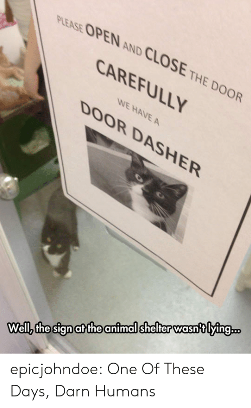 Tumblr, Animal, and Animal Shelter: PLEASE OPEN AND CLOSE THE DOOR  CAREFULLY  WE HAVE A  DOOR DASHER  Wellz the sign at the animal shelter wasntlying.. epicjohndoe:  One Of These Days, Darn Humans