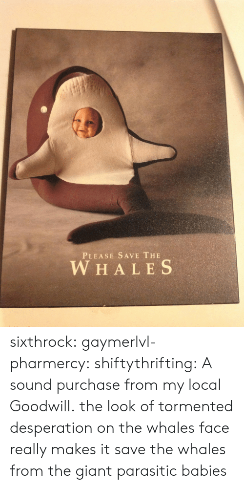 Target, Tumblr, and Blog: PLEASE SAVE THE  W HALES sixthrock: gaymerlvl-pharmercy:  shiftythrifting:  A sound purchase from my local Goodwill.  the look of tormented desperation on the whales face really makes it   save the whales from the giant parasitic babies