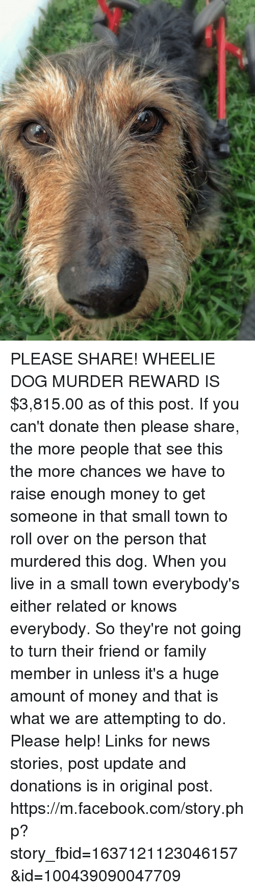 Home Market Barrel Room Trophy Room ◀ Share Related ▶ Facebook family memes Money News facebook.com Help Live m.facebook m.facebook.com Murder 🤖 next collect meme → Embed it next → PLEASE SHARE! WHEELIE DOG MURDER REWARD IS $381500 as of this post If you can't donate then please share the more people that see this the more chances we have to raise enough money to get someone in that small town to roll over on the person that murdered this dog When you live in a small town everybody's either related or knows everybody So they're not going to turn their friend or family member in unless it's a huge amount of money and that is what we are attempting to do Please help! Links for news stories post update and donations is in original post httpsmfacebookcomstoryphp?story_fbid=1637121123046157&id=100439090047709 Meme Facebook family memes Money News facebook.com Help Live m.facebook m.facebook.com Murder 🤖 php Dog links com friend donate huge you story person town post what for share more this get please when you people turn enough then someone wheelie their roll roll over see small please help over And Cant When Its A This Post Small Town That Not Raise Original The Update Member Theyre Its Amount Original Post In A Are Have Stories Going If You And That Unless Either Not Going Not Going To Fbid Https Chances Knows Everybody Reward Family Member Murdered Facebook Facebook family family memes memes Money Money News News facebook.com facebook.com Help Help Live Live m.facebook m.facebook m.facebook.com m.facebook.com Murder Murder 🤖 🤖 php php Dog Dog links links com com friend friend donate donate huge huge you you story story person person town town post post what what for for share share more more this this get get please please when you when you people people turn turn enough enough then then someone someone wheelie wheelie their their roll roll roll over roll over see see small small please help please help over over And And Cant Cant When When Its A Its A This Post This Post Small Town Small Town That That Not Not Raise Raise Original Original The The Update Update Member Member Theyre Theyre Its Its Amount Amount Original Post Original Post In A In A Are Are Have Have Stories Stories Going Going If You If You And That And That Unless Unless Either Either Not Going Not Going Not Going To Not Going To Fbid Fbid Https Https Chances Chances Knows Knows Everybody Everybody Reward Reward Family Member Family Member Murdered Murdered found @ 23 likes ON 2018-04-23 00:02:43 BY me.me source: facebook view more on me.me