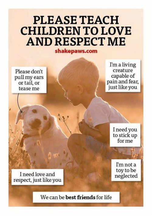 Love and respect for sons-9043